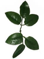 Лист розы разм. 18 см