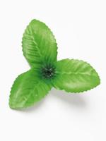 Лист клубники разм. 8 см
