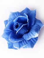 Голова розы шелк 4 сл. диам. 11,5 см