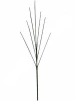 Подбукетник без листьев с толстым стеблем 7 г. выс. 81 см