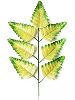 Лист папоротника 7 листьев разм. 43 см