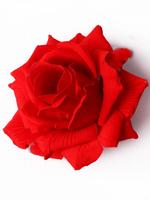 Голова розы бархат 6 сл. диам. 14 см