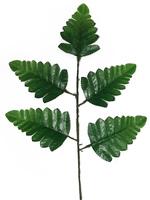 Лист папоротника 5 листьев разм. 35 см