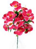 Букет орхидей 14 г. выс. 40 см